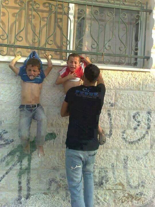 Boycott Israel Please Works By Freddy S Zalta